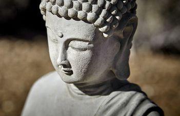 Buddhizmus BA minorspecializáció